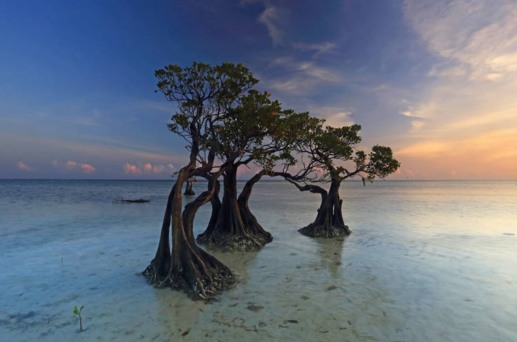 This place has become a subject that attracts many photographers from professional to amateur.